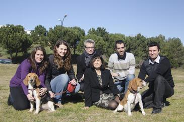 perros_diabeticos