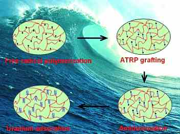 adsorbente-uranio