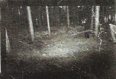 rendlesham_forest[1]