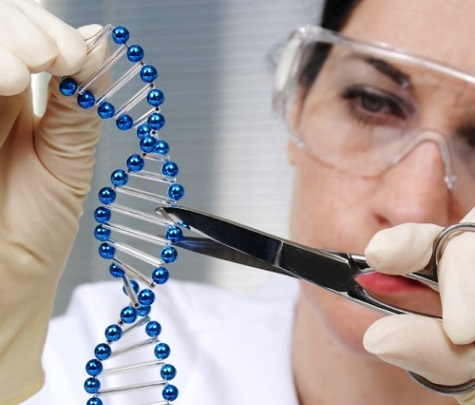 ADN-CRISPR