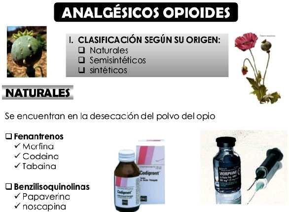 analgesicos-opiaceos-morfina