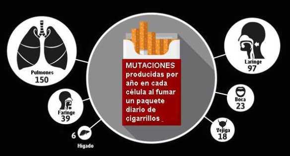 mutacionesxcigarrillos