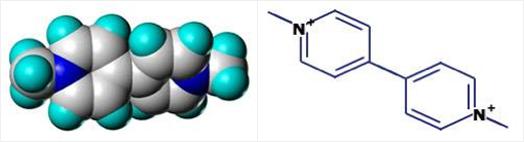 paraquat-%281%2c1%27-dimethyl-4%2c1